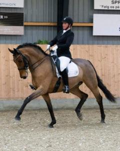 Velkommen til trenings helg med Mette Sørensen @ Fredriksborg Hestesportsenter